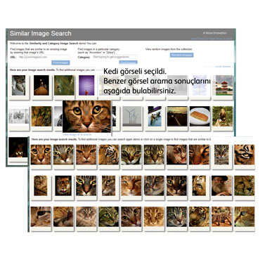 Similar Image Search Tool Available on Open Xerox