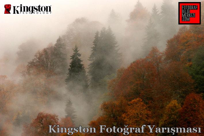 kingston yrs gorsel