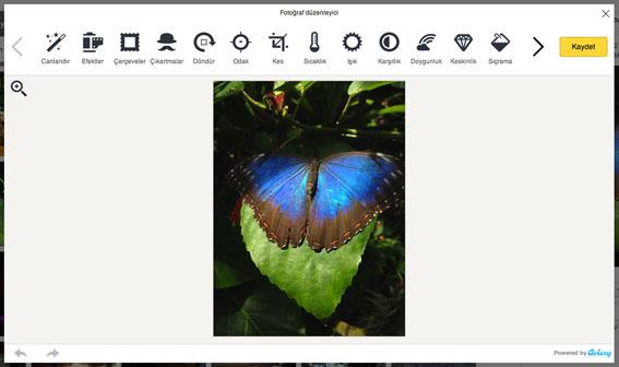 Yandex'den fotoğraf severler için yenililik