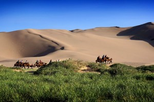 Moğolistan'a Yolculuk