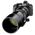 Olympus M.Zuiko ED 300mm f/4 IS Pro