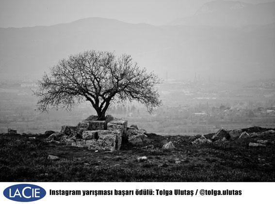 basari tolgaulutas - LaCie Türkiye Instagram fotoğraf yarışması sonuçlandı