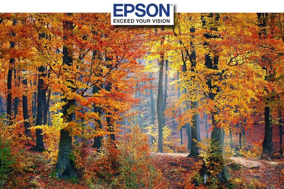 Epson ile Sonbaharın Renklerini Yakala