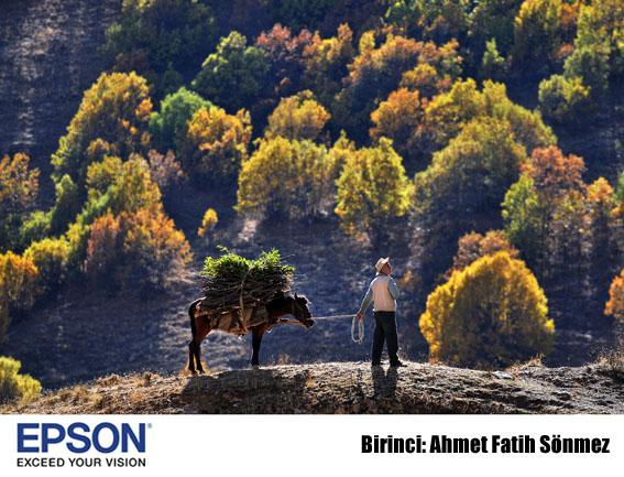 """epson birinci - """"Sonbaharın Renkleri"""" fotoğraf yarışması sonuçlandı"""
