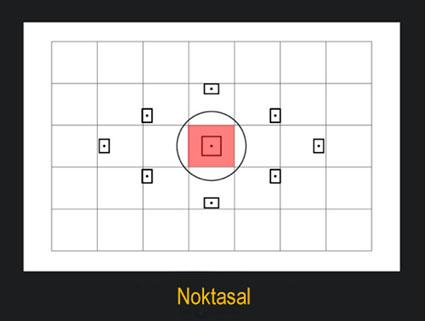 Noktasal