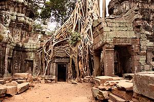 Angkor Tapınakları