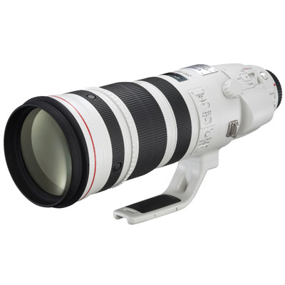 Canon EF 200-400 f/4L IS USM 1.4x