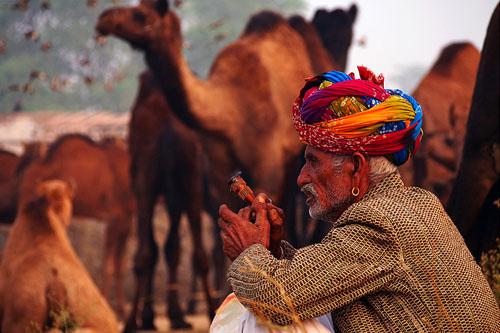Pushkar Panayırı'nda Hindistan