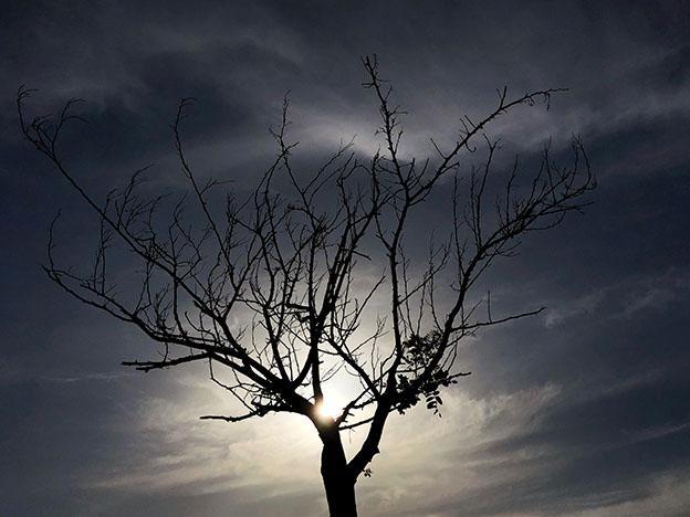 iPhone ile harika gün batımı fotoğrafları