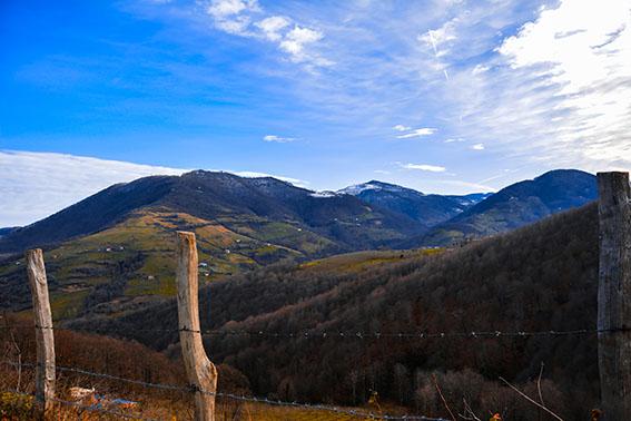 yasin codunoglu alp - Sizin Fotoğraflarınız - 1