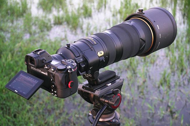 002 ALI00727 - İnceleme: AF-S NIKKOR 180-400mm f/4E TC1.4 FL ED VR