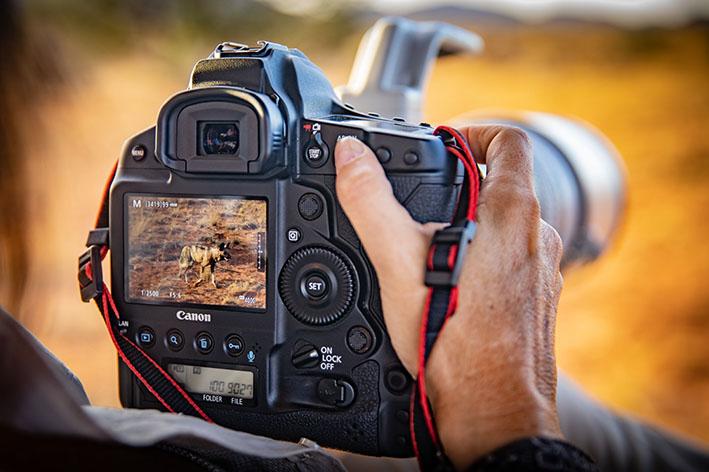 1628754118 EOS 1D X Mark III Kalahari Lifestyle 34 - Canon Yeni Ürün Yazılımı ile Film Yapımcılarını Destekliyor